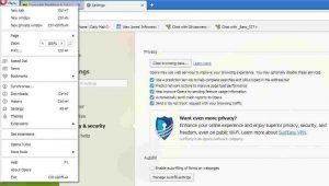 Opera web browser showing its Settings options
